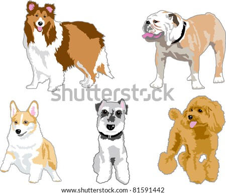 Illustration of the dog - stock vector