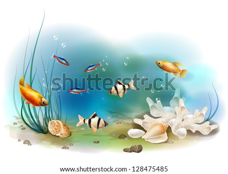 illustration of the tropical underwater world - stock vector