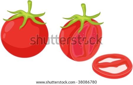 illustration of tomatoes on white