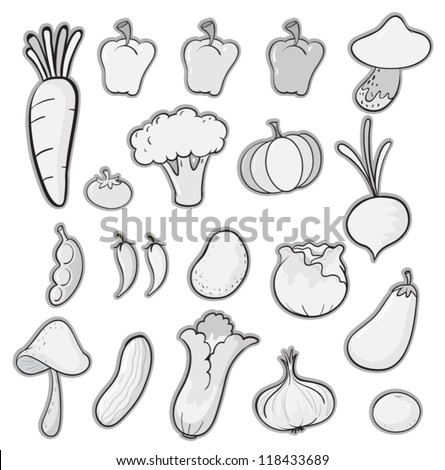 illustration of various vegetables on a white background - stock vector