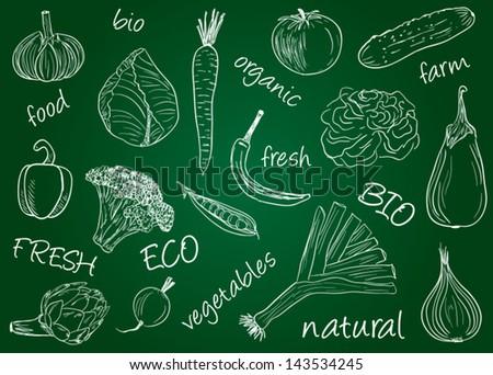 Illustration of vegetables  chalky doodles on school board - stock vector