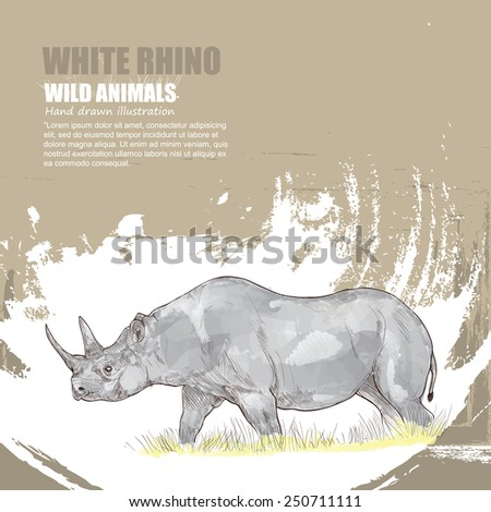 illustration of white rhino. wild animals background. - stock vector