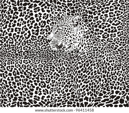 illustration pattern background leopard skins and heads - stock vector