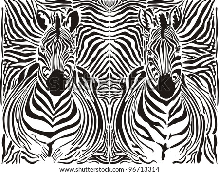 illustration pattern background zebras skins and heads - stock vector