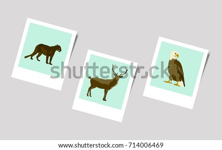 Illustration Polaroid Photo of puma deer eagle