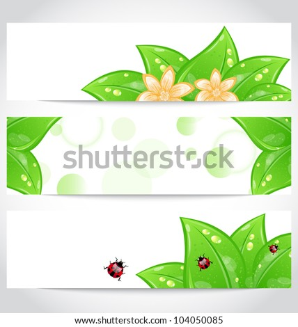 Illustration set of bio concept design eco friendly banners (2) - vector