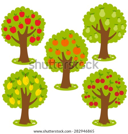 Illustration set of fruit orchard trees - stock vector