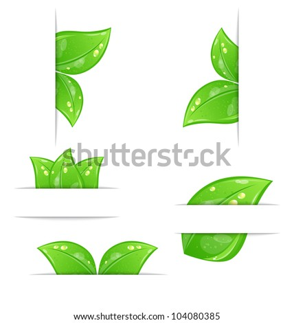 Illustration set of green ecological labels with leaves isolated on white background - vector - stock vector