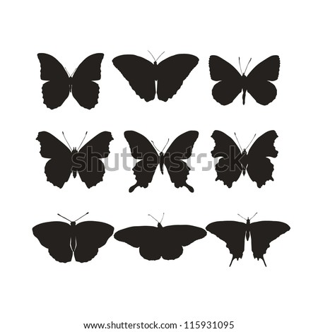 Illustration set with silhouettes butterflies - stock vector