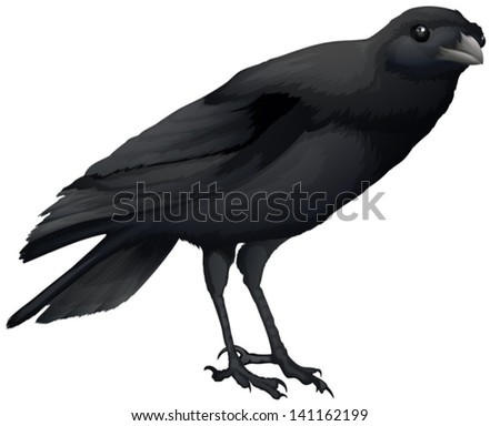 Illustration showing a black crow