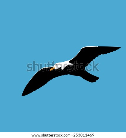 Illustration soaring seagull in blue sky, seabird isolated on blue background - vector - stock vector