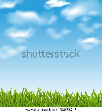 Illustration summer background with green grass and sky - vector - stock vector