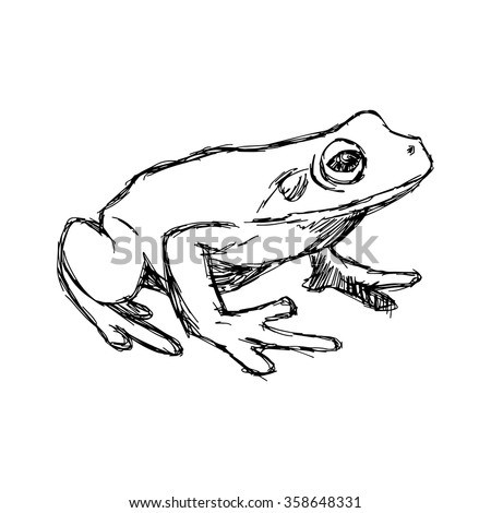 illustration vector hand drawn doodle frog isolated on white.