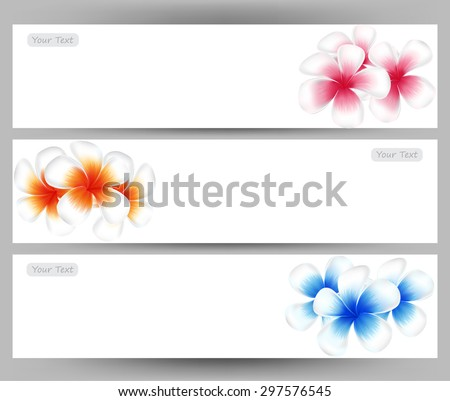 illustration vector of Hawaii flower Frangipani, colorful Plumeria on white background  brochure template. - stock vector