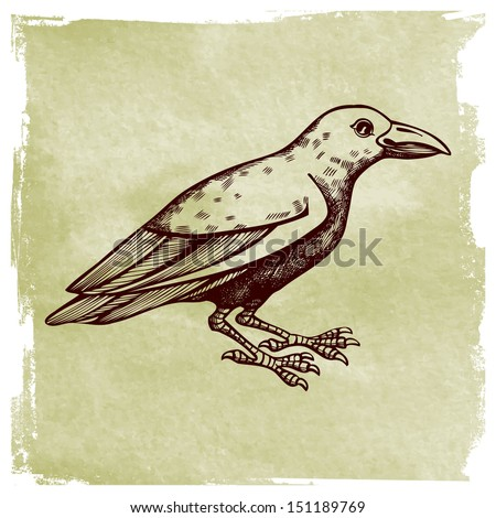 Illustration with a raven on the old paper - stock vector