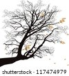 illustration with autumn tree branch isolated on white background - stock vector