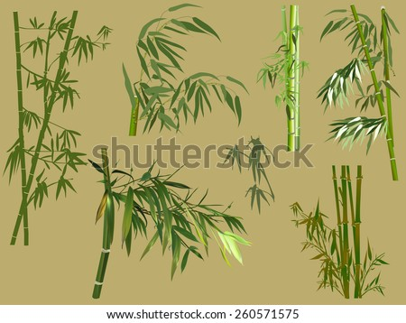 illustration with bamboo collection on yellow background - stock vector
