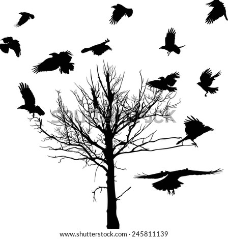illustration with black dry large tree and crows silhouettes isolated on white background - stock vector