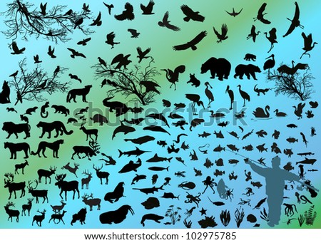 illustration with different animals silhouettes - stock vector