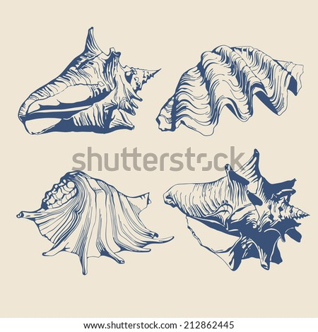 illustration with different stylized and blue seashells on a light background - stock vector