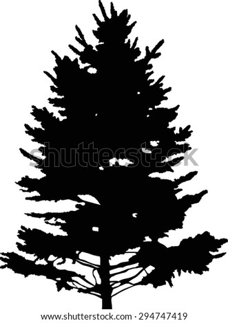 illustration with fir tree silhouette isolated on white background