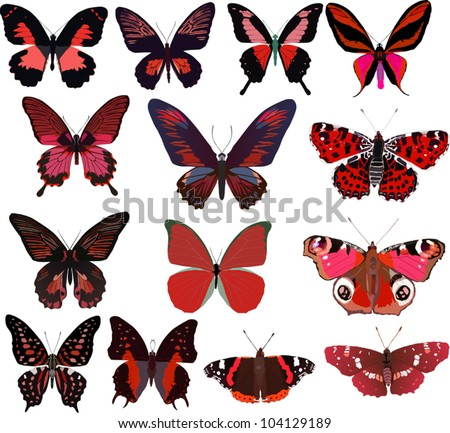 illustration with fourteen red butterflies isolated on white background - stock vector