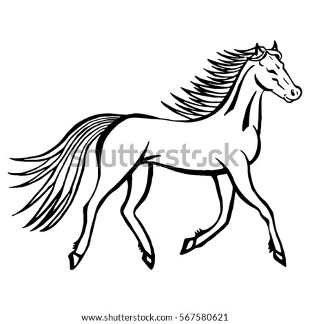 Wild Horses With Design Coloring