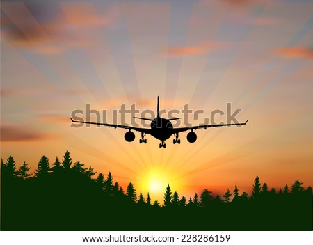 illustration with plane at sunset above green forest