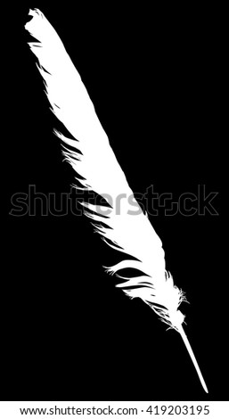 illustration with single white feather on black background