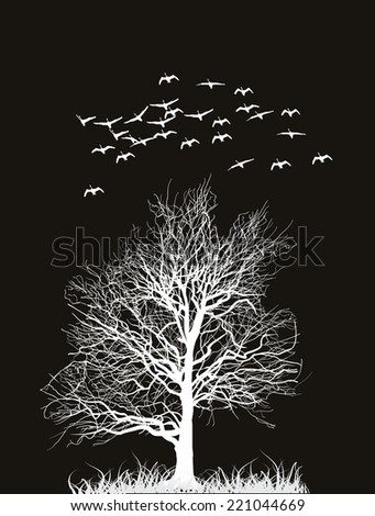 illustration with swans and bare tree isolated on black background - stock vector