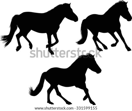 illustration with three horses isolated on white background