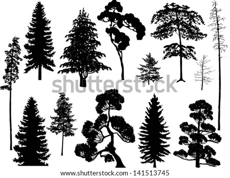 illustration with trees set isolated on white background - stock vector