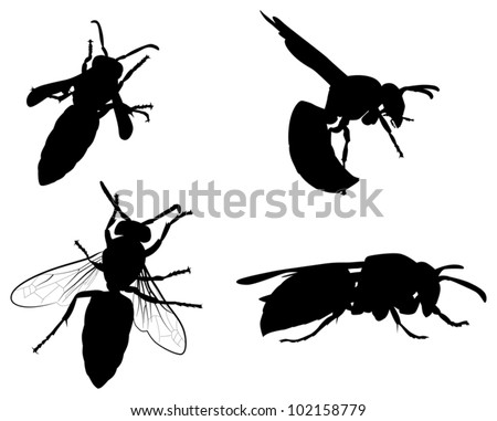 illustration with wasp silhouettes collection isolated on white background - stock vector