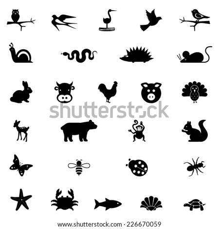 Illustrations of animals - stock vector