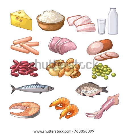 Top Protein Containing Foods