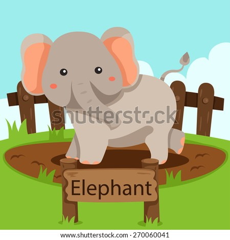 Illustrator of Elephant in the zoo - stock vector