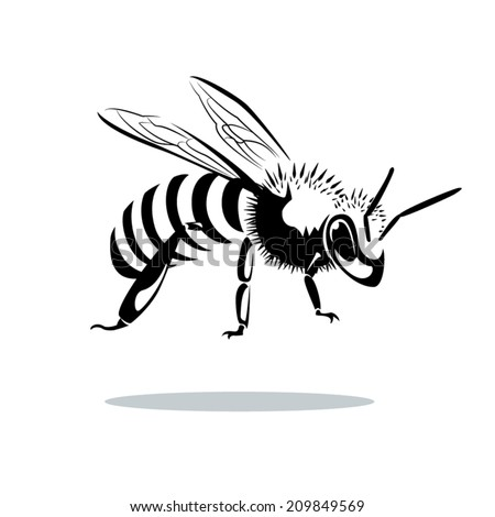 image graphic style of bee  isolated on white background