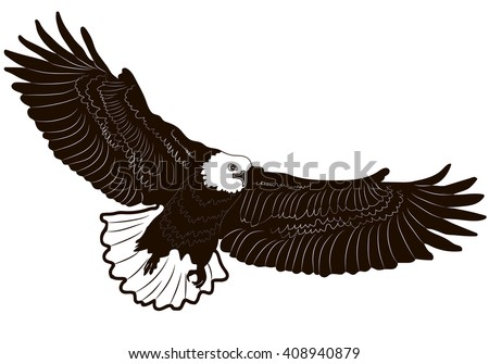 Image graphic style of eagle isolated on white background. Vector illustration.