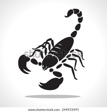 image graphic style of scorpion  isolated on white background - stock vector