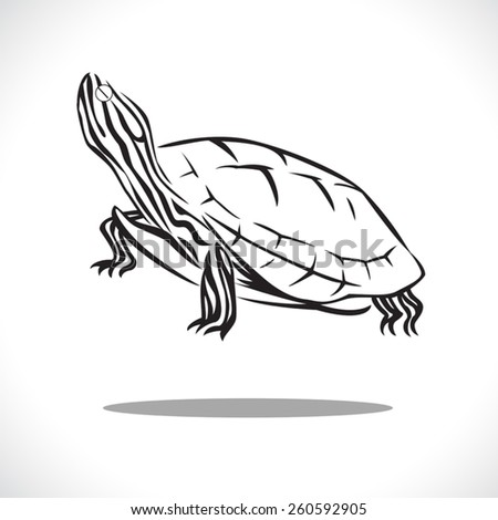 image graphic style of turtle isolated on white background - stock vector