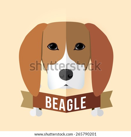 Image of a dog's face. Beagle. Vector illustration - stock vector