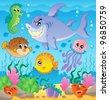 Image with undersea theme 3 - vector illustration. - stock vector