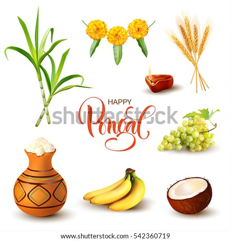 Indian harvest festival design elements isolated on white. Traditional elements of Pongal and Makar Sankranti. Vector set.