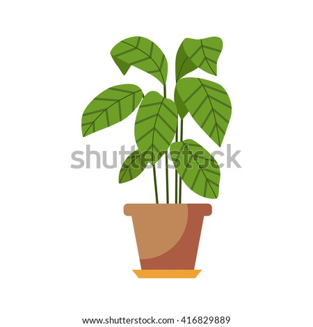 Indoor plant isolated. Vector flat Indoor plant pot illustration. Concept of flat home plant pot. Colorful Indoor plant in pot for your design. Home plant icon - stock vector