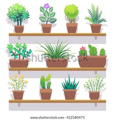 Indoor plants in pots flat icons set. Interior plant in pot and nature plant for home gardening. Vector illustration - stock vector