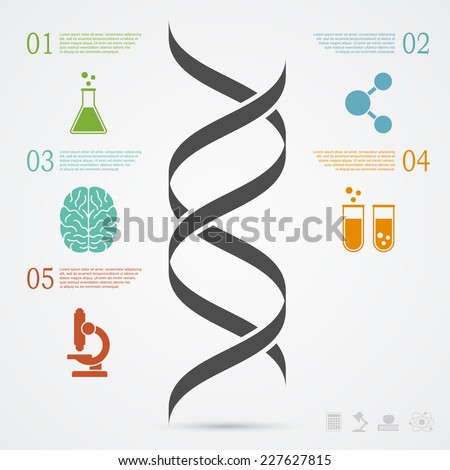 infographic template with DNA structure and icons, research, development, science and biotechnology concept - stock vector