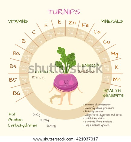 Infographics about nutrients turnips vector illustration stock infographics about nutrients in turnips vector illustration of turnips vitamins vegetables healthy ccuart Choice Image