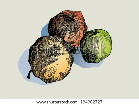 Drawing With Lines And Dots : Ink drawing lines dots fruit still stock vector 194902727 shutterstock