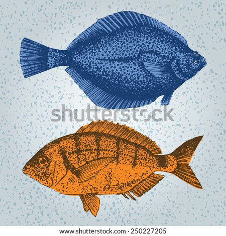 ink hand draw illustration of fishes - stock vector