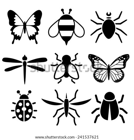 insect collection - stock vector